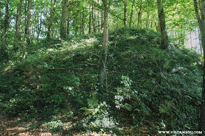 Château de Maillé : la motte féodale