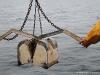viltVedette océanographique Albert Lucas : la benneansou-7_00257
