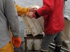 Vedette océanographique Albert Lucas : le contenu de la benne est déversé dans un tamis