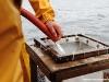 Vedette océanographique Albert Lucas : filtrage du contenu de la benne